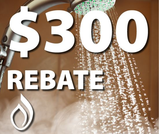 Phillips Energy 300 Tankless Hot Water Rebates Now